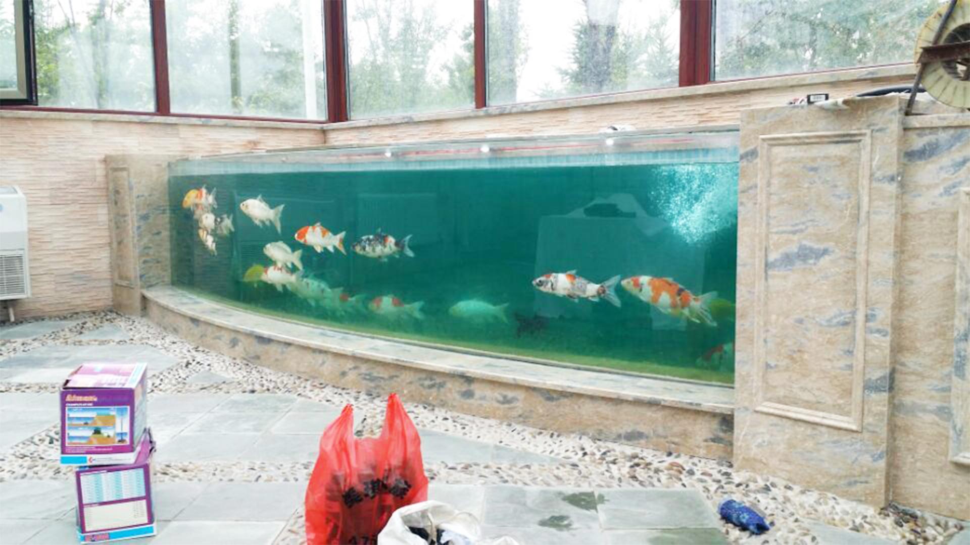 Acrylic Fish Tank Making